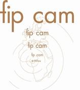 Fabrique Camerounaise de Parquet - FIPCAM